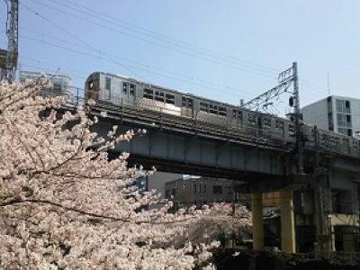 桜と東急池上線