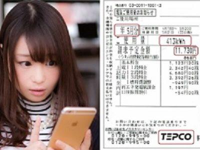 電気代の引き下げサービス(新電力)【改修 管理】